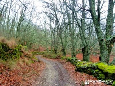 Valle del Ambroz-Sierra de Bejar - Gredos; senderismo singles; mejores rutas senderismo madrid;asoci